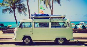 vw-van-palm-trees-1